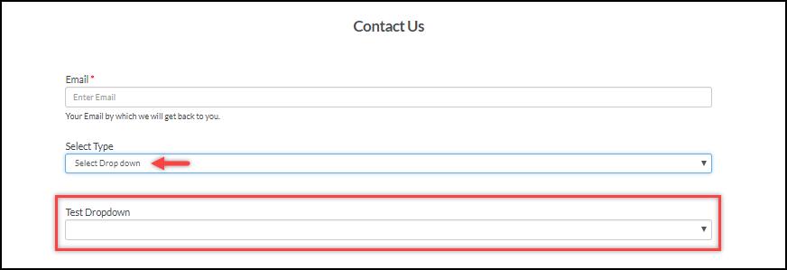 WSDesk   Conditional Drop-down   Selecting Drop-down