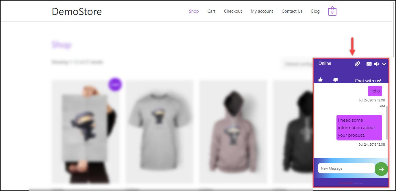 Set up WSChat - ELEX WordPress Live Chat Plugin | Chat Widget on the website