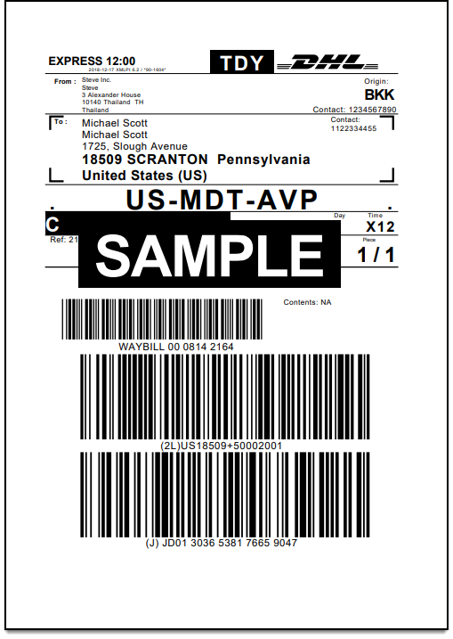 WooCommerce DHL Express Bulk Label Printing Add-On | Sample DHL Express Label