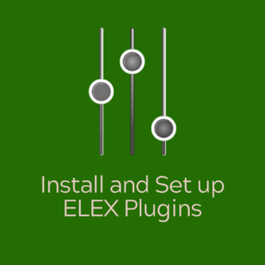 ELEX Services | Install and Set up ELEX Plugins
