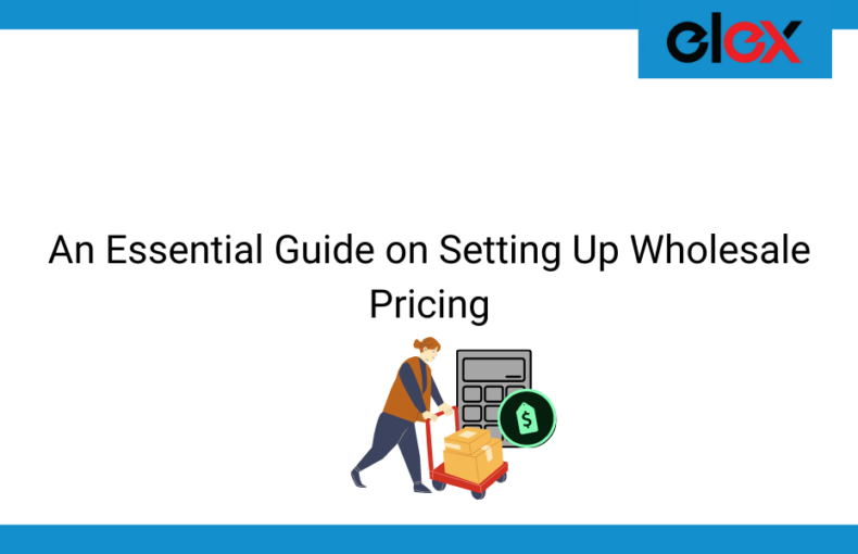 An Essential Guide on Setting Up Wholesale Pricing | Blog banner
